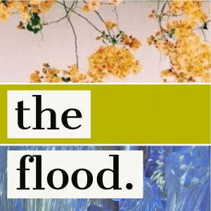 the flood.